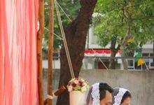 WIDA - PANDU by MyDiamonds Wedding
