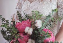 Verena Mia Wedding Gown 2016 by Verena Mia