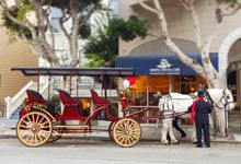 Wine Country Weddings by Wine Country Wedding Carriages