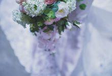 Pre-wedding Shoot by Renatus Photography | Cinematography