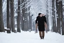 Winter of Love by theOcular