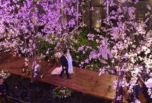 The Wedding of Wilson Pesik & Vania Larissa by Focus Production