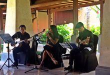 Djampiro for Sampoerna Gathering by Djampiro Band Bali