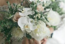 Verena Mia Wedding Gown June 2016 by Verena Mia