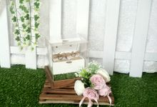 RUSTIC RING BEARER babypink& white by DNY Creative