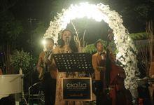 The Wedding Of Tamara & Dody by Cikallia Music Entertainment