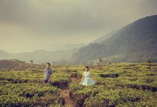 Hendra & Stephanie by JJ Bride