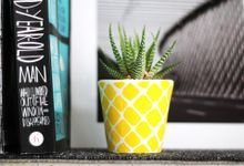 cactipineapple by cactushood