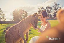 JOJO & PO PRE-WEDDING by Brian Chong Photography