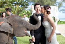 Jessica & Pepzi by The Romance Planners