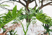 Lush Tropical Garden Wedding by Chere Weddings & Parties