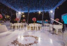 Twinkle Twinkle by The Wedding Atelier