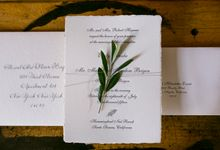 Olive Branch by Maude Press
