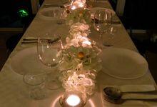 White Dinner by Floraphil