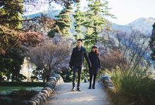 Memorable Queenstown by SweetEscape