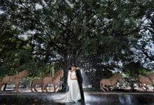 Bridal Pre-Wedding by Raymond Phang Photography