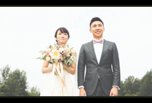 Nai Kiang & Kai Han - Same-day-edit by Treehouse Weddings Singapore