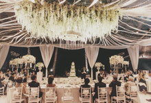 Starry Starry Night by The Wedding Atelier