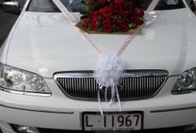 Stretch Limousines by Tic Tac Tours & Premier Limousines