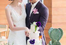 Love Deeper Than The Ocean Part 3a by Wedrock Weddings