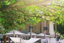 Pop Art Poolside by Wedrock Weddings