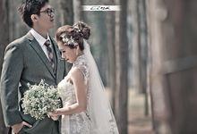 Enchanting Korea in Spring by WhiteLink