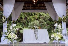 Mark and Karri by Botanica Weddings