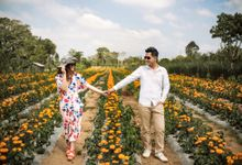 PREWEDDING REINALDO & OVI by lovre pictures