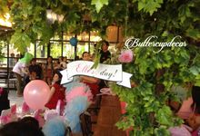 Princess Elle's First Party by Buttercup Decoration