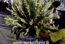 Our Projects by Merpati Florist