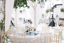 Dusty blue natural  by AiLuoSi Wedding & Event Design Studio
