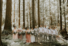 Blush Romantic Wedding by AJR Designs