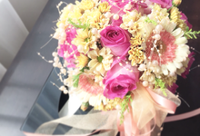 Teddy & Fani Wedding - 11/11/17 by Alethea Sposa
