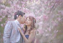 Hidden sakura locations in Japan by La-vie Photography