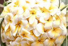 Hand Bouquet by Bali Vintage Florist