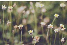 supa & lili by Sebun Photography