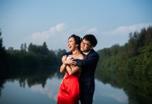 Wedding Day of  JT and KW Swissotel Merchant Court Singapore by oolphoto