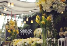Universal Hotel - Bianca by Organdi Decor