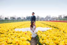 Destination PreWedding by AllureWeddings by ALLUREWEDDINGS