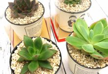 Cactus Include Personalised Label by Fine Souvenir