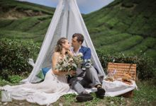 Cameron Highlands by Midsummer Events