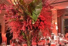 Stylish Red Candybar by Candybar Couture