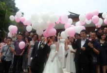 Special Effect - Baloons - Pigeon by Sparkling Organizer