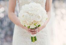 Beautiful in White by Conrad Bali