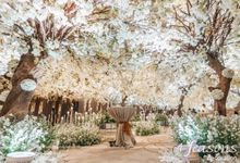 The Wedding of Dana & Hendri by 4Seasons Decoration