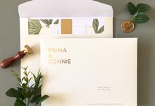 Prima & Connie by Dot & Line Designs