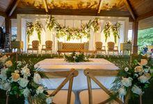 Wedding Alien & Saptia by Garis Decoration