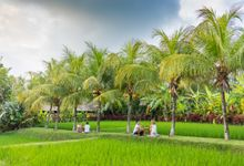 Garden Honeymoon by Bebek Tepi Sawah Villas