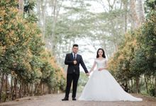 Pre-wedding of Valent & Lidya by vilioo