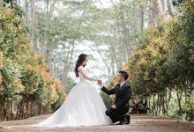 Pre-wedding of Valent & Lidya by vilioo
